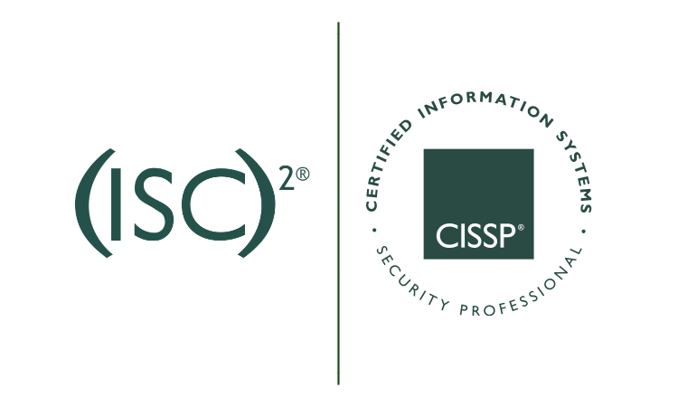 Exam Dummies: Can They Help You Ace CISSP?